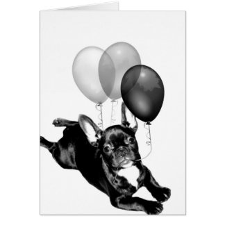 С днём рождения! Birthday French Bulldog card