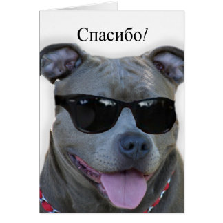 спасибо Russian Thank you Pitbull greeting card