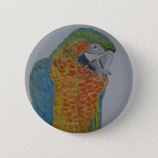 オウム パロット Macaw Parrot chewing on foot 2 Inch Round Button