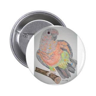 オウム パロットRed-bellied Parrot stretching 2 Inch Round Button