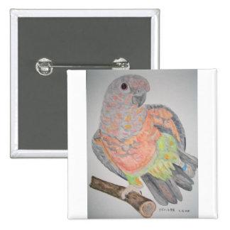 オウム パロットRed-bellied Parrot stretching 2 Inch Square Button