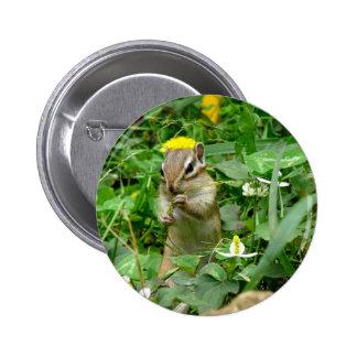 シマリス缶バッジ chipmunk badge 缶バッジピンバック