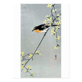 レンギョウに小鳥, 古邨 Bird on Forsythia, Ohara Koson Postcard
