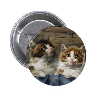 二匹 子猫 缶バッジピンバック