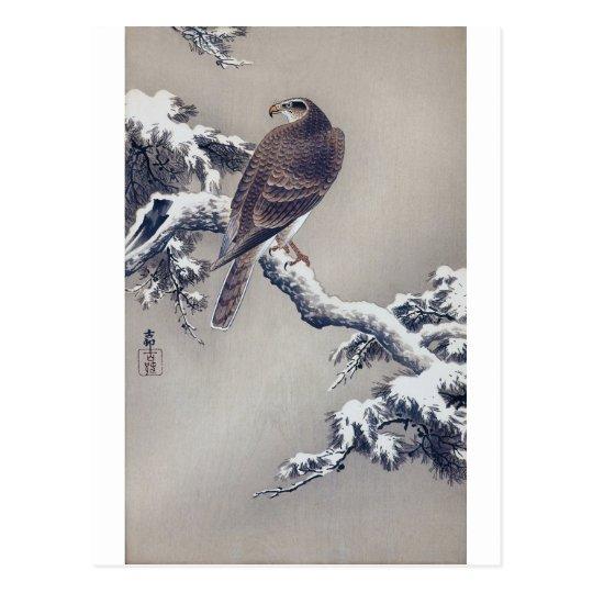 松に鷹, 古邨 Hawk on Pine tree, Ohara Koson, Woodcut Postcard