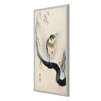 柳にタゲリ, 古邨 Northern lapwing on Willow branch, Koson Canvas Print