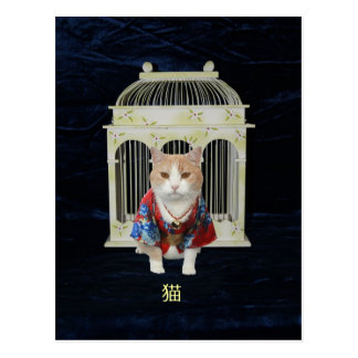 猫 Lucky Cat Postcard