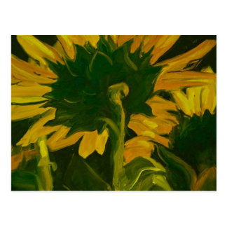 0010-behind the sunflower postcard