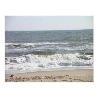 001 LBI waves Postcard