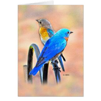 010 Bluebird Love Note Card 4.25x5.5 Matte