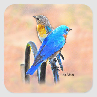 010 Bluebird Love Sticker 1.5x1.5 Sheet of 20
