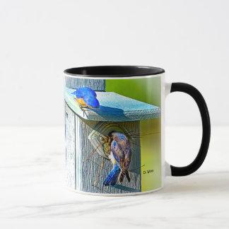 020 Bluebird Nesting 11 oz Classic Mug
