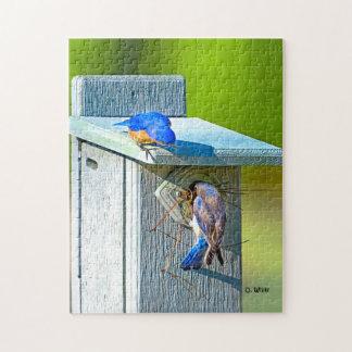 020 Bluebird Nesting 11x14 Puzzle 252 Pieces