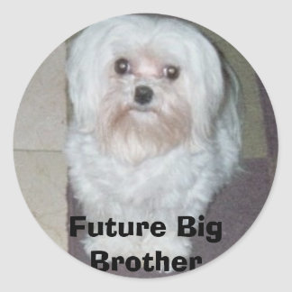 026_00A, Future Big Brother Round Sticker