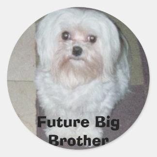 026_00A, Future Big Brother Classic Round Sticker