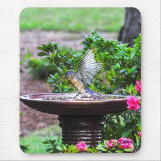030 Bluebird Bath 7.75x9.25 Mouse Pad