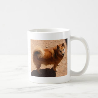 031806 Copper.jpg Coffee Mug