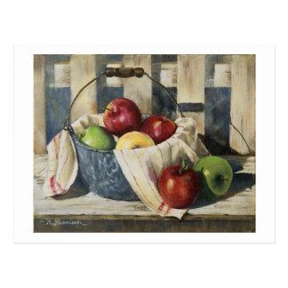 0449 Apples in Enamelware Pail Postcard