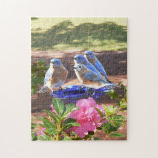 050 Bluebirds Forever 11x14 Puzzle 252 Pieces