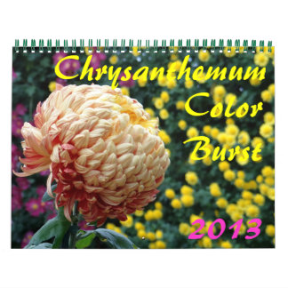 0 2013 Chrysanthemum Color Burst Wall Calendars