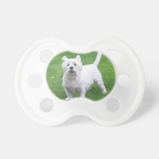 0-6 months BooginHead Westie Pacifier soother