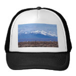 1002 Area: Caribou with mountain backdrop Hat