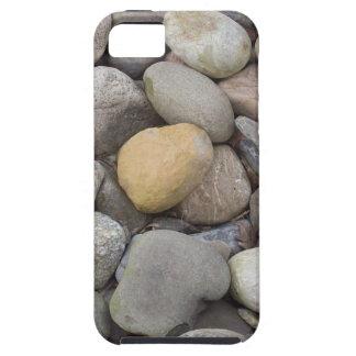 100_5333 iPhone 5 CASES