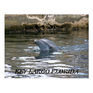 100_8578, KEY LARGO FLORIDA POSTCARD