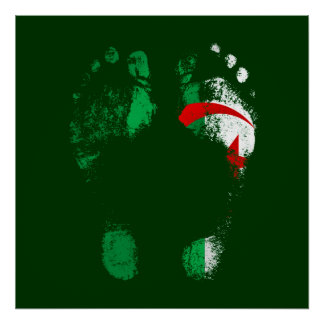 100% Algeria - Algerian to the soles of my feet. Poster