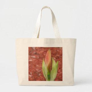 102a Amaryllis Apple blossom bud Large Tote Bag