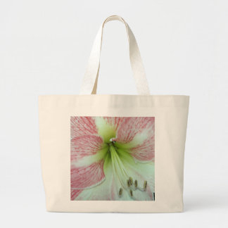 104a Amaryllis Apple Blossom open 2 Large Tote Bag
