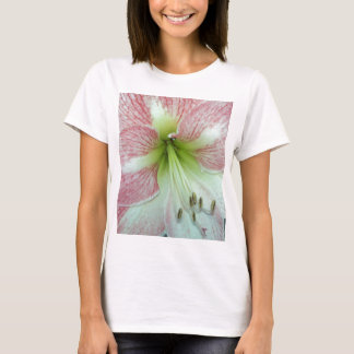 104a Amaryllis Apple Blossom open 2 T-Shirt