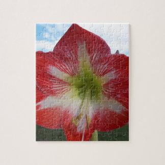 106a Amaryllis red and white MegaStar2 Jigsaw Puzzle