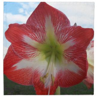 106a Amaryllis red and white MegaStar2 Napkin