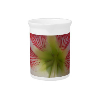 106a Amaryllis red and white MegaStar2 Pitcher