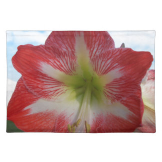 106a Amaryllis red and white MegaStar2 Placemat