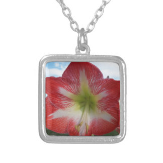 106a Amaryllis red and white MegaStar2 Silver Plated Necklace
