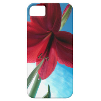 108a Vivid red Amaryllis Flower Case For The iPhone 5