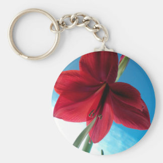 108a Vivid red Amaryllis Flower Keychain