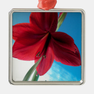 108a Vivid red Amaryllis Flower Metal Ornament