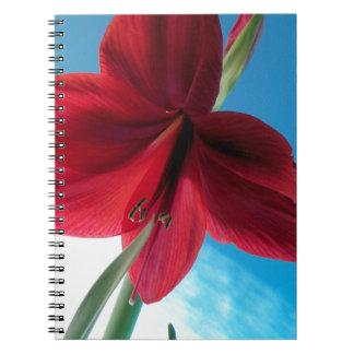 108a Vivid red Amaryllis Flower Notebook