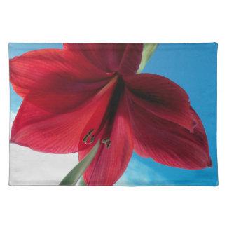 108a Vivid red Amaryllis Flower Placemat