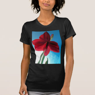 108a Vivid red Amaryllis Flower T-Shirt