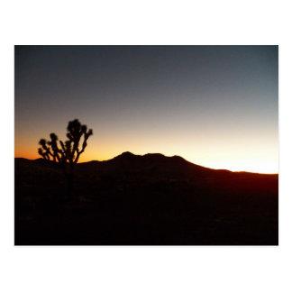 10/12/11 Sunset Postcard