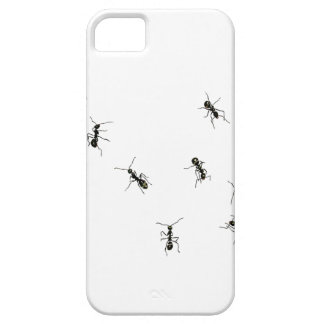 10 ants iPhone 5 covers