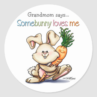 10x10-some-bunny classic round sticker