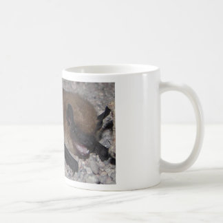 11/3/11 Redoing Some Images To Other Items Classic White Coffee Mug