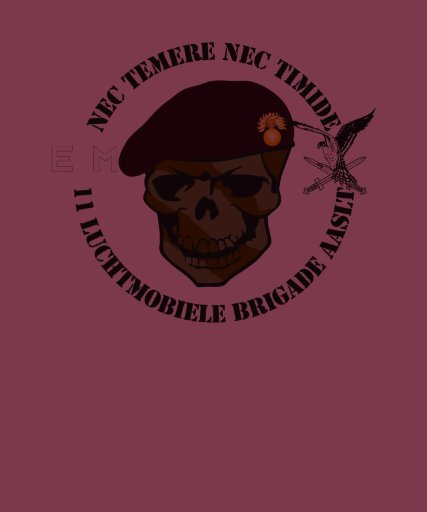 11 Infbat Grenadiers air-mobile one brigade AASLT T-shirt