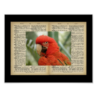 """11"""" x 8.5"""", Poster (Bird And Text Vintage Designs)"""