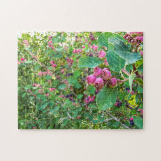 11x14 Saskatoons Puzzle with Gift Box